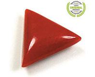 Red Triangular Coral
