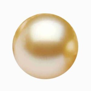 Yellow-South-Sea-Pearl